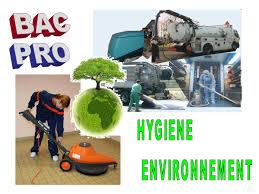 bac pro hygienne