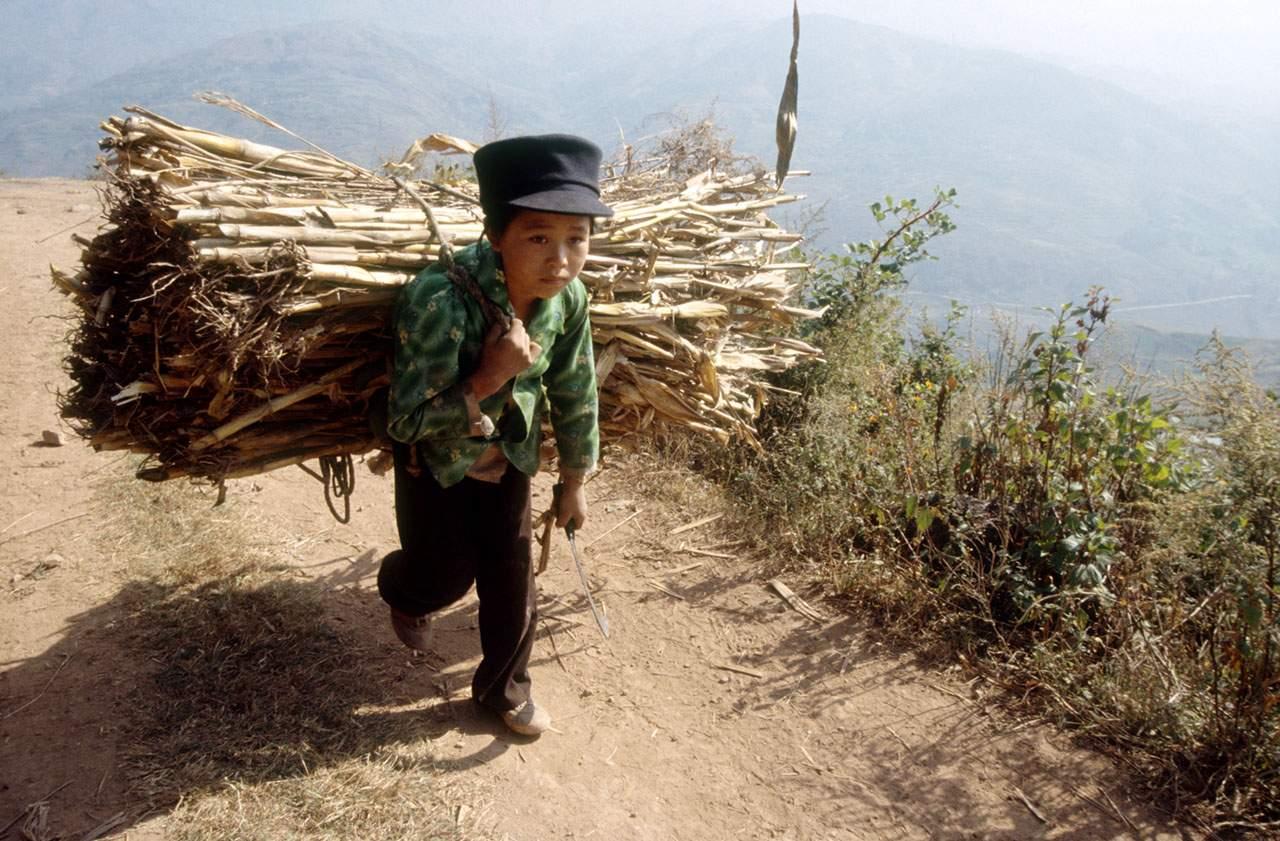 Les solutions pour lutter contre le travail des enfants